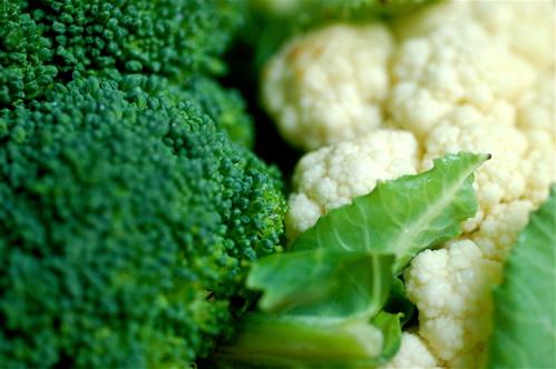Brócolis e couve-flor, foto de Jacqueline, fevereiro de 2010