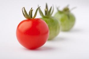 Tomates******